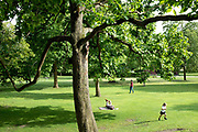 People relaxing and playing at the Botanical Gardens in Sheffield, United Kingdom on 9 June 2017
