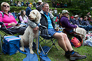 Audience at the Hardraw Scaur Brass Band Festival. A man holds on to his dog which was growling at the music. Organised by the Yorkshire and Humberside Brass Band Association, the competition is Britain's second oldest outdoor contest and takes place annually in Hardraw Scar in Wensleydale, North Yorkshire, England, UK. The area, a natural amphitheatre, attracts bands from all over the North of England and is a popular event amongst players and audiences alike.