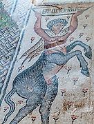 The Centaur mosaic from ' Beyond the Nile ' Mosaic (detail) in the Nile House at Zippori National Park The city of Zippori (Sepphoris) A Roman Byzantine period city with an abundance of mosaics, Lower Galilee, Israel