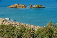 Grèce, Crète, plage de palmiers de Vai, la plus grande forêt naturelle de palmiers en Europe // Greece, Crete island, Vai beach and palm trees, eastern Crete