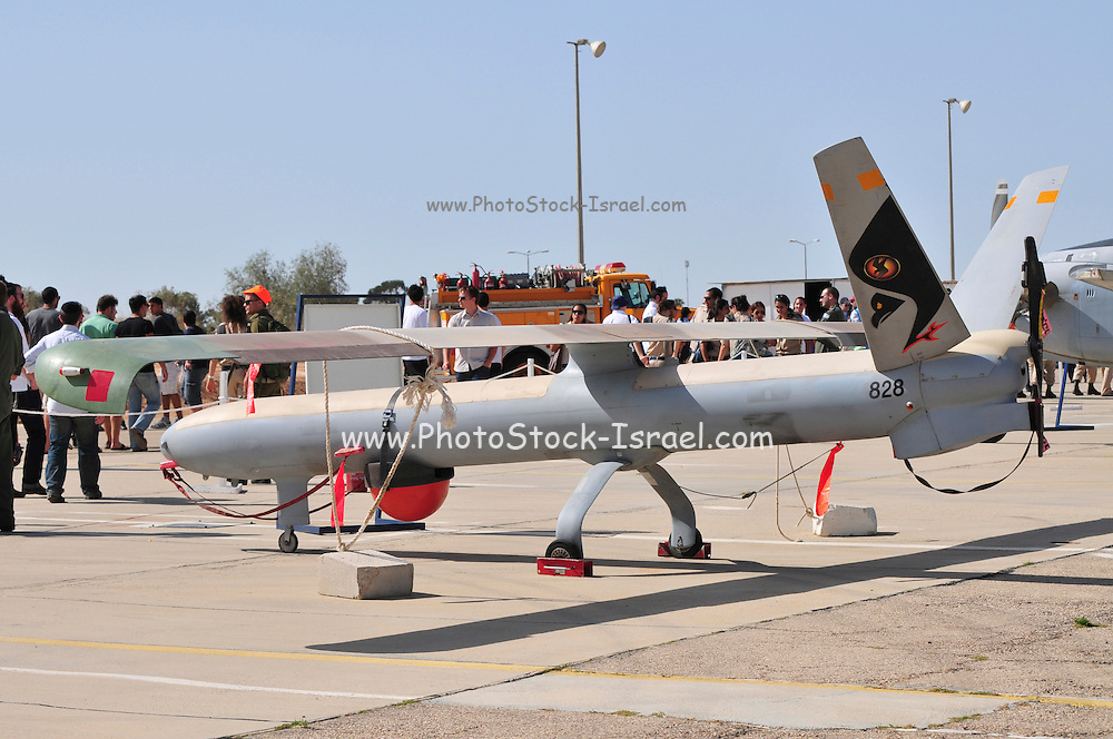 Israel, Hazirim, near Beer Sheva, Israeli Air Force museum. The national centre for Israel's aviation heritage. Elbit Systems Hermes 450 unmanned aerial vehicle