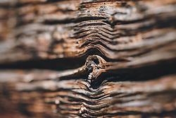 THEMENBILD - die Struktur eines alten Holzbalken im Detail, aufgenommen am 10. April 2020 in Kaprun, Oesterreich // the structure of an old wooden beam in detail, in Kaprun, Austria on 2020/04/10. EXPA Pictures © 2020, PhotoCredit: EXPA/Stefanie Oberhauser