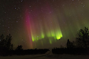 Bright and colourful Aurora Borealis or Northern Lights over Finnmark, Norway, from the border between Norway and FInland.