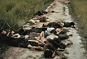 The My Lai Massacre, the mass murder of 347 to 504 unarmed citizens of the Republic of Vietnam (South Vietnam), almost entirely civilians and the majority of them women and children, perpetrated by US Army forces on March 16 1968. Bodies of some of the victims lying along a road.