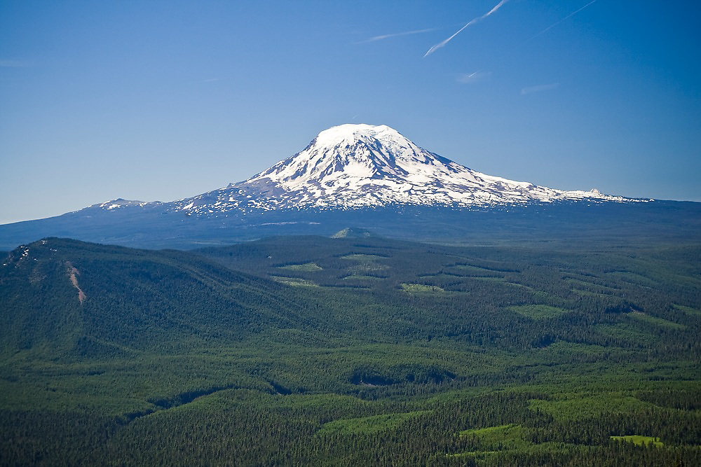 Forest clearcuts and Mount Adams, seen from the Goat Rocks Wilderness, Washington.