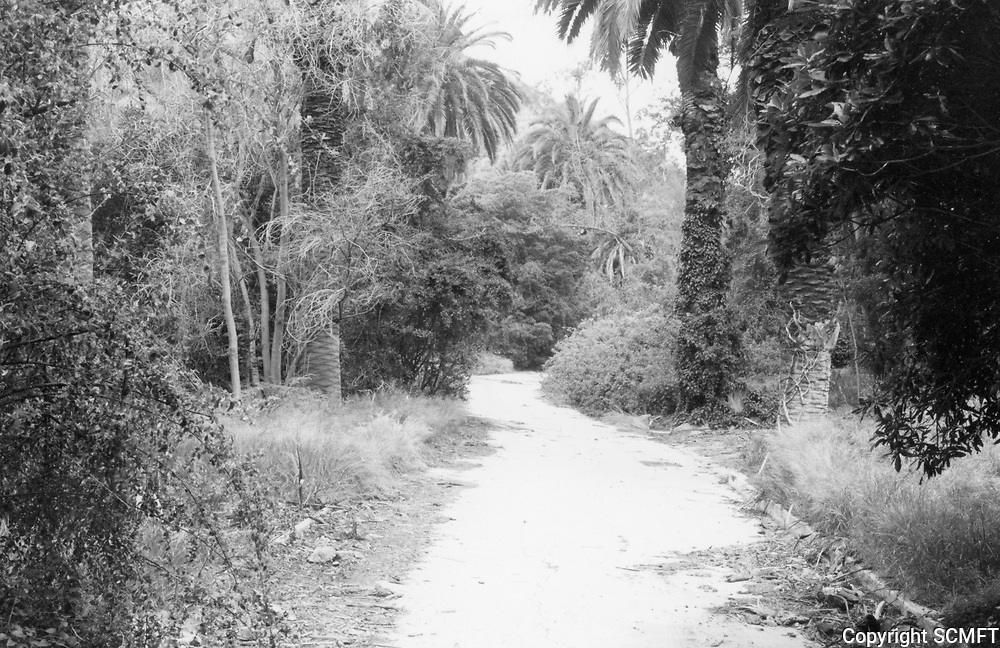 1973 Old road in Runyon Canyon