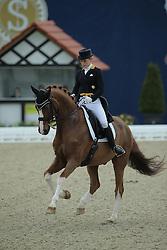 Buchwald Beatrice, (GER), Daily Pleasure 4<br /> Qualification Grand Prix Kur<br /> Horses & Dreams meets Denmark - Hagen 2016<br /> © Hippo Foto - Stefan Lafrentz
