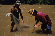 FISHING, MALAYSIA. Sarawak, Borneo, South East Asia. Dayak, 'Kelabit', fishermen with net. Tropical rainforest and one of the world's richest, oldest eco-systems, flora and fauna, under threat from development, logging and deforestation. Home to indigenous Dayak native tribal peoples, farming by slash and burn cultivation, fishing and hunting wild boar. Home to the Penan, traditional nomadic hunter-gatherers, of whom only one thousand survive, eating roots, and hunting wild animals with blowpipes. Animists, Christians, they still practice traditional medicine from herbs and plants. Native people have mounted protests and blockades against logging concessions, many have been arrested and imprisoned.