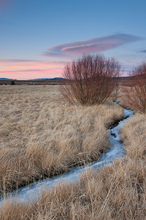 """""""Frozen Creek in Martis Valley"""" - This small frozen creek was photographed at sunset in Truckee's Martis Valley."""