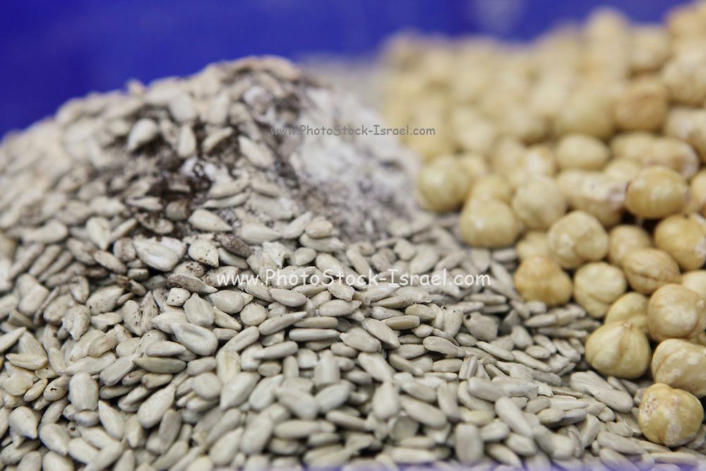 Nuts and sunflower seeds to be added to dough at a bakery