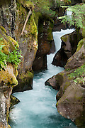 Water flows through Avalanche Gorge, in Glacier National Park, Montana, USA