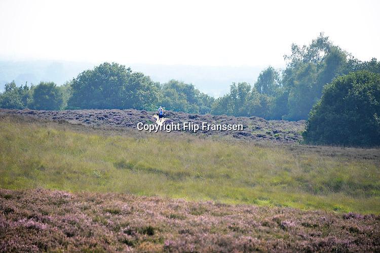 Nederland, Mook, 28-8-2017Natuurgebied De Mookerheide.Ook bekend om de historische Slag op de Mookerheide op 14 april 1574. De Mookerhei is een natuurgebied ten oosten van Mook in de provincie Limburg. Zij ligt op een uitloper van de Nijmeegse stuwwal. In het zuidelijke deel groeit struikheide die in augustus prachtig bloeit. Dit gebied is onderdeel van de wandelroute, pelgrimsroute, walk of wisdom door het rijk van Nijmegen.Foto: Flip Franssen