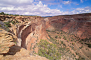 Massacre Cave and Canyon Del Muerto from Massacre Cave Overlook, Canyon de Chelly National Monument, Arizona.