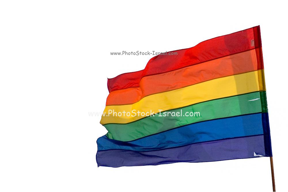 Gay Flag on white background
