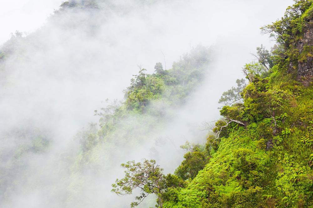 Steep forested ridges shrouded in mist in Wainiha Valley, Kauai, Hawaii.