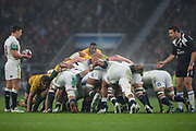 """Twickenham, Surrey. UK. Right, Referee, Ben O'KEEFFE, watches the England scrum as Ben YOUNGS, waited for the """"Put In Signal""""  from the ref.  <br /> England VS Australia, Autumn International. Old Mutual Wealth Series. RFU Stadium, Twickenham. UKduring the <br /> England VS Australia, Autumn International. Old Mutual Wealth Series. RFU Stadium, Twickenham. UK<br /> <br /> Saturday  18.11.17<br /> <br /> [Mandatory Credit Peter SPURRIER/Intersport Images]"""