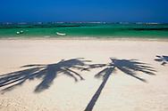 Palm tree shadows on Kiwengwa Beach, Zanzibar, Tanzania