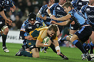 Cardiff Blues v Australia at the Cardiff City Stadium on Tuesday 24th Nov 2009. pic by Andrew Orchard, Andrew Orchard sports photography. Ryan Cross of Australia is tackled