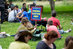 © Licensed to London News Pictures. 09/07/2016. London, UK. People join the Picnic Against Brexit in Green Park, hosted by MoreInCommon. Two weeks ago (23 June) the British public voted to leave the European Union. Photo credit : Tom Nicholson/LNP