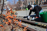 Spring Cutback on the High Line I - 2013