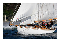 Viola 1908 Gaff Cutter..Mixed and bright conditions for the fleet as they race from Kames to Largs...* The Fife Yachts are one of the world's most prestigious group of Classic .yachts and this will be the third private regatta following the success of the 98, .and 03 events.  .A pilgrimage to their birthplace of these historic yachts, the 'Stradivarius' of .sail, from Scotland's pre-eminent yacht designer and builder, William Fife III, .on the Clyde 20th -27th June.   . ..More information is available on the website: www.fiferegatta.com . .Press office contact: 01475 689100         Lynda Melvin or Paul Jeffes
