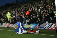 Photo: Lee Earle.<br /> Portsmouth v Manchester City. The Barclays Premiership. 10/02/2007. Portsmouth's Pedro Mendes celebrates after scoring their opening goal.