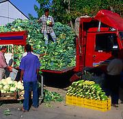 Fresh vegetables arriving by lorry at Fethiye market, Turkey