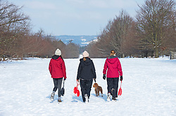 © Licensed to London News Pictures 11/02/2021.        Sevenoaks, UK. Three friends walk homes after a mornings sledging in the park. Lockdown sledging fun at Knole Park in Sevenoaks, Kent as the freezing cold weather continues in Kent and the South East with more snow expected. Photo credit:Grant Falvey/LNP