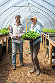 Wild Roots Farm