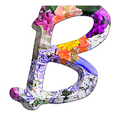 The Capitol Letter B Part of a set of letters, Numbers and symbols of 3D Alphabet made with colourful floral images on white background