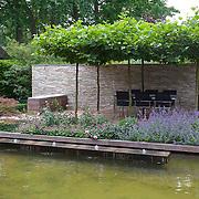 Modern Garden 909