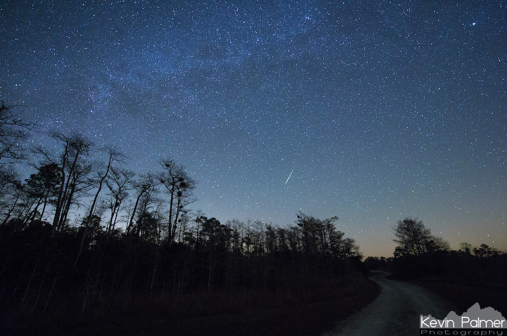 A Geminid meteor burns up just below Polaris in Big Cypress National Preserve. I have never seen the North Star so low before since I have never been this far south.<br />