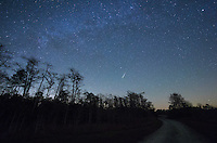 A Geminid meteor burns up just below Polaris in Big Cypress National Preserve. I have never seen the North Star so low before since I have never been this far south.<br /> <br /> Date Taken: 12/14/2014