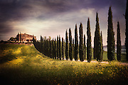 A viilla on a hill up a Cypress lined driveway in the Siena Region in Tuscany Italy.