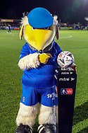 Haydon the Womble with FA cup ball during the The FA Cup match between AFC Wimbledon and West Ham United at the Cherry Red Records Stadium, Kingston, England on 26 January 2019.