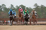 Colonial Cup - Camden, South Carolina. Timber racing action.