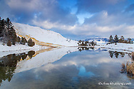 Canary Spring reflects into pond in winter in Yellowstone National Park, Wyoming, USA