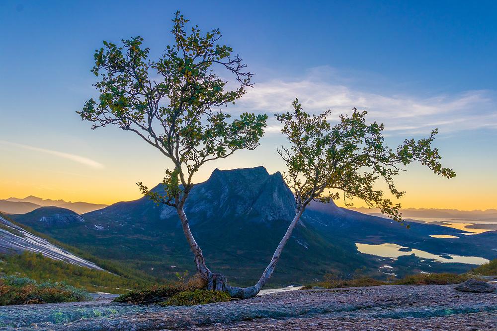 Stortinden i Efjord i Ballangen kommune sett fra Verdenssvadet.