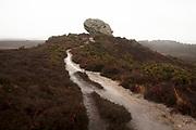 The Agglestone on Godlingston Heath. Studland, Dorset, UK.