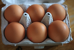 August 4, 2017 - Berlin, Berlin, Germany - Scandal around with the insecticide Fipronil to loaded eggs is Germany expands. At least 12 federal states are concerned. (Credit Image: © Simone Kuhlmey/Pacific Press via ZUMA Wire)