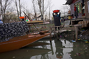 No one can believe from the front side of Dal Lake more than 10,000 families live here and are depending on Dal lake for their sustainability.It's like a 'floating city in a lake'. Srinagar, © Sandipa Malakar.