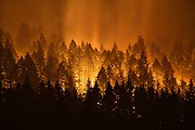 The Eagle Creek Fire continues to burn on the Oregon side of the Columbia River Gorge near Cascade Locks and the Bridge of the Gods, late Tuesday, Sept. 5, 2017.  The fire, started by a 15-year-old boy throwing firecrackers, destroyed nearly 50,000 acres of the Gorge area.