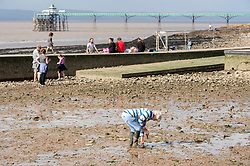 © Licensed to London News Pictures; 20/08/2020; Clevedon, UK. Clevedon Marine Lake is drained to enable volunteers from The Marine Lake Enthusiasts Society (Marlens) to search for litter and rubbish and a chance to find lost items. Previously when the lake was drained a man was reunited with his wedding ring  after it came off while he was swimming in the lake. The lake is also drained and cleaned regularly to ensure the water quality remains good. The lake will be refilled this evening when the spring tide at 8.45pm overtops the walkway and the sea from the Bristol Channel fills up the lake. Photo credit: Simon Chapman/LNP.