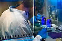 27/Mayo/2013 Mallorca. Esporles.<br /> Análisis genómico de las muestras de la Expedición Malaspina en el Instituto Mediterráneo de Estudios Avanzados, IMEDEA. Txetxu Arrieta.<br /> <br /> ©JOAN COSTA.