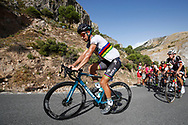 Peter Sagan (SVK - Bora - Hansgrohe) during the UCI World Tour, Tour of Spain (Vuelta) 2018, Stage 4, Velez Malaga - Alfacar Sierra de la Alfaguara 161,4 km in Spain, on August 28th, 2018 - Photo Luca Bettini / BettiniPhoto / ProSportsImages / DPPI
