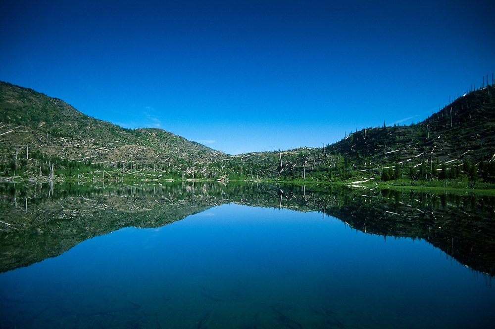Meta Lake, Mt. St. Helens National Volcanic Monument, Washington, US