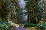 WA  Wilderness