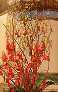2007 - Vietnamese New Year