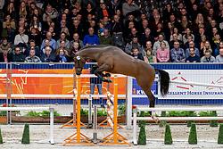 168, Malando W<br /> KWPN hengstenkeuring - 's Hertogenbosch 2020<br /> © Hippo Foto - Dirk Caremans<br />  30/01/2020