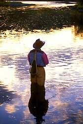 Stock photo of a fisherman flyfishing in the Upper Yampa near Steamboat Springs, Colorado.
